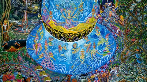 Ayahuasca Before & After: Back To The Jungle